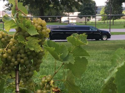 5 Steps to Booking a Great Wine Tour in Pennsylvania