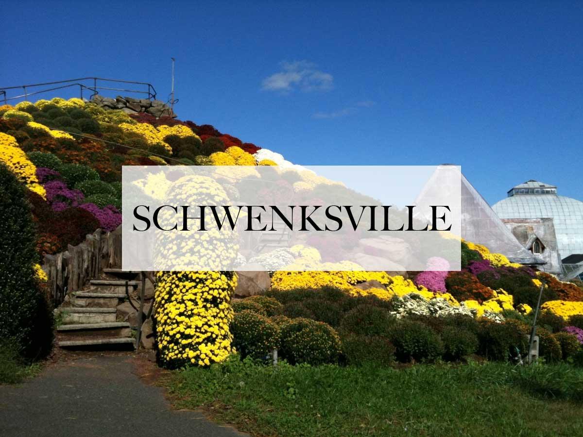 limo service in schwenksville, pa