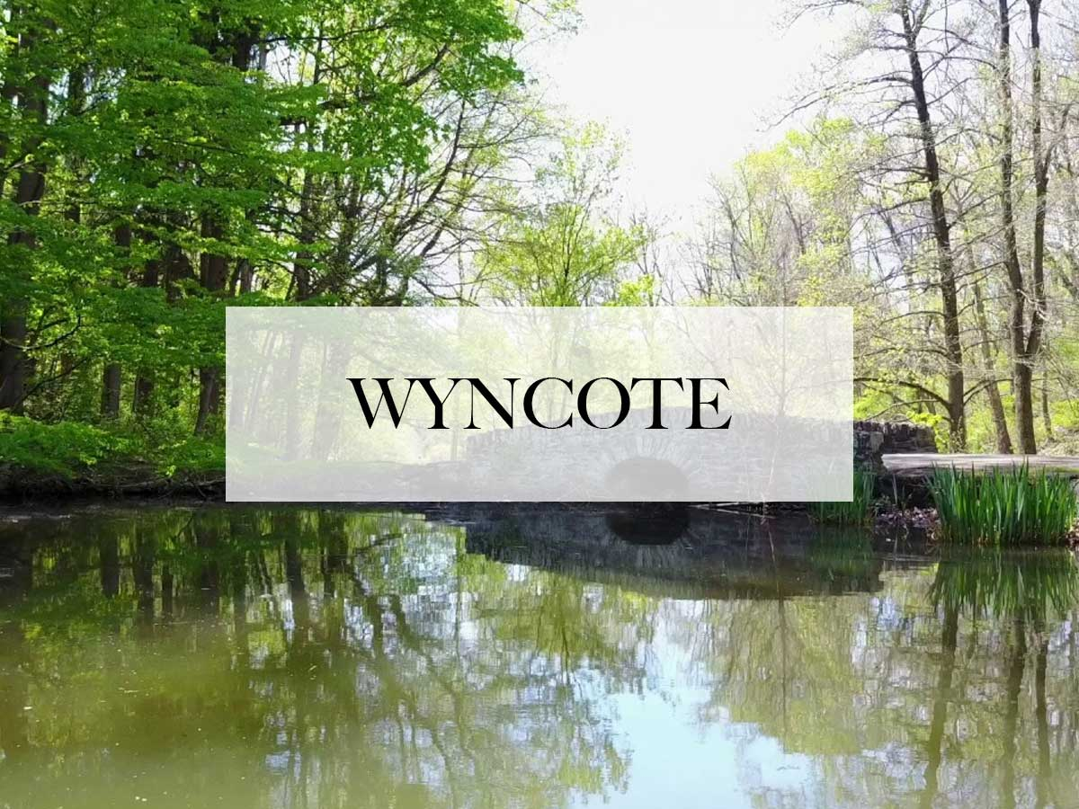 limo service in wyncote, pa