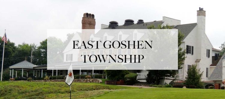 limo service in east goshen township, pa