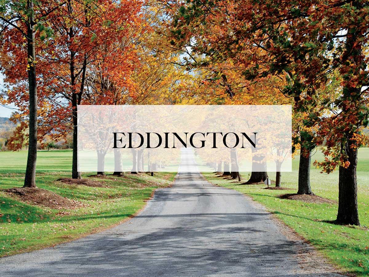 limo service in eddington, pa