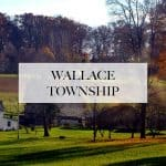 limo service in Wallace township, pa