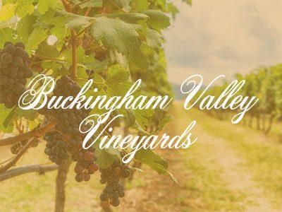 Buckingham Valley Vineyards – Slushies and Wine Tours