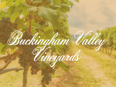 Buckingham Valley Vineyards – Slushies and Wine Tours