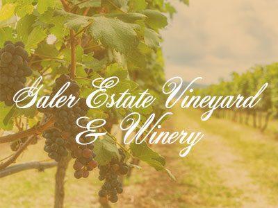 Galer Estate Vineyard & Winery – Crazy Good Wine Tour
