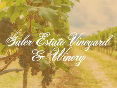 Galer Estate Vineyard & Winery – Crazy Good Wine Tour