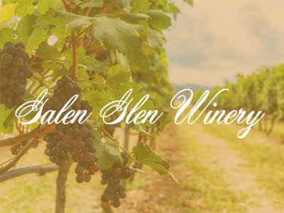 Galen Glen Winery – A Company Outing Wine Tour