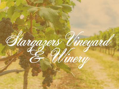 Stargazers Vineyard & Winery – My Amazing Wine Tour