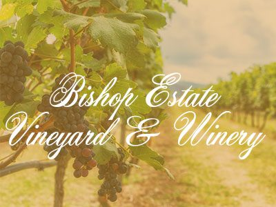 Bishop Estate Vineyard & Winery – My Amazing Wine Tour