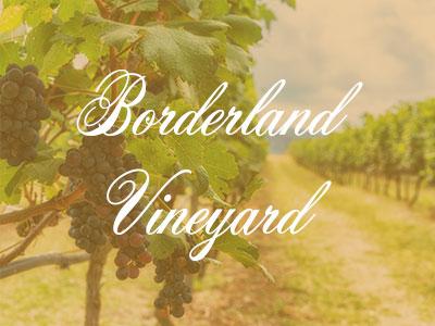 Borderland Vineyard – A Wine Tour