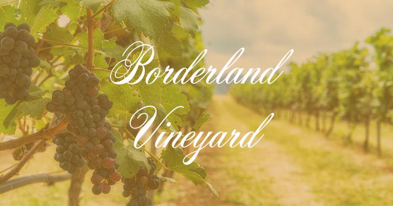 borderland vineyard