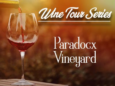 Paradocx Vineyard – A Wine Tour