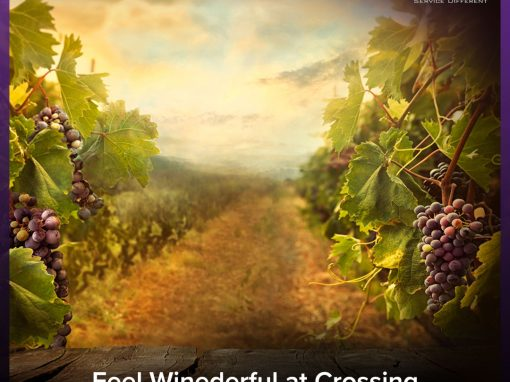 Feel Winederful at Crossing Vineyards and Winery